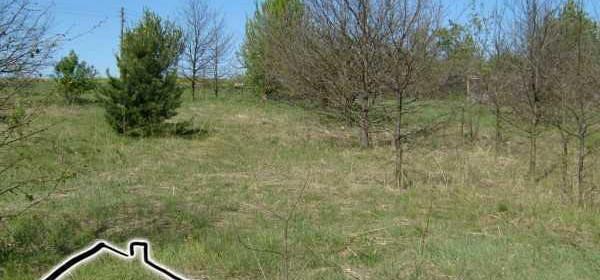 Działka na sprzedaż 28197 m² Myszkowski (pow.) Koziegłowy (gm.) Rzeniszów - zdjęcie 2