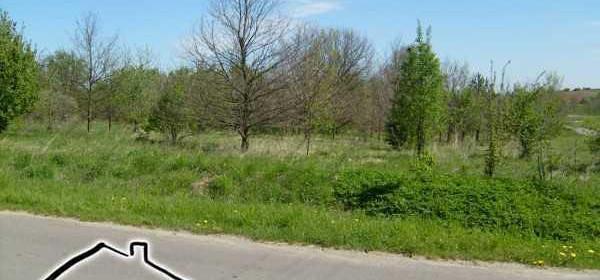 Działka na sprzedaż 28197 m² Myszkowski (pow.) Koziegłowy (gm.) Rzeniszów - zdjęcie 3