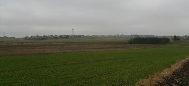 Działka na sprzedaż 8800 m² Myszkowski (Pow.) Koziegłowy (Gm.) Pińczyce Pińczyce - zdjęcie 3