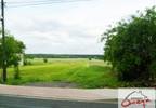 Działka na sprzedaż, Winowno, 10654 m² | Morizon.pl | 6283 nr2