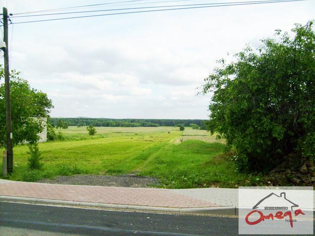 Działka na sprzedaż, Winowno, 10654 m² | Morizon.pl | 6283