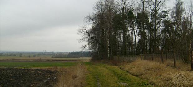 Działka na sprzedaż 8800 m² Myszkowski (Pow.) Koziegłowy (Gm.) Pińczyce Pińczyce - zdjęcie 2