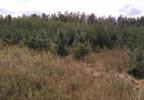 Działka na sprzedaż, Kuczbork-Osada, 46400 m²   Morizon.pl   1350 nr2