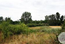 Działka na sprzedaż, Nowe Miasto nad Wartą, 28410 m²