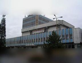 Magazyn, hala do wynajęcia, Pabianice Warszawska 44, 900 m²