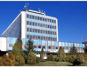 Lokal usługowy do wynajęcia, Pabianice warszawaska, 10 m²