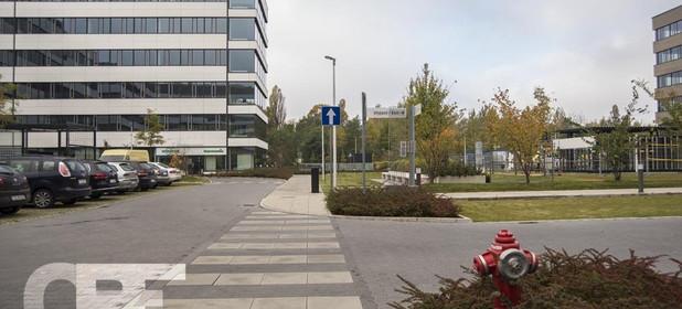 Lokal do wynajęcia 820 m² Poznań Grunwald Bułgarska - zdjęcie 3