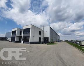 Biuro do wynajęcia, Wysogotowo Bukowska, 150 m²