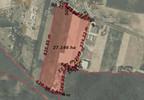 Działka na sprzedaż, Brzeźno Kostrzyńska, 270000 m²   Morizon.pl   2411 nr2