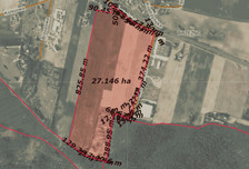Działka na sprzedaż, Brzeźno Kostrzyńska, 270000 m²