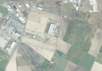 Działka na sprzedaż, Tarnowo Podgórne Szumin, 5765 m² | Morizon.pl | 4766 nr4