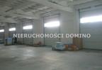 Magazyn, hala na sprzedaż, Łódź Teofilów, 10500 m²   Morizon.pl   7795 nr5