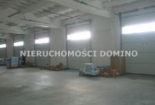 Lokal użytkowy do wynajęcia, Łódź Teofilów, 1000 m²