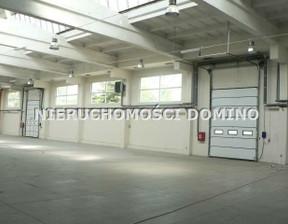 Magazyn, hala do wynajęcia, Pabianice, 7750 m²