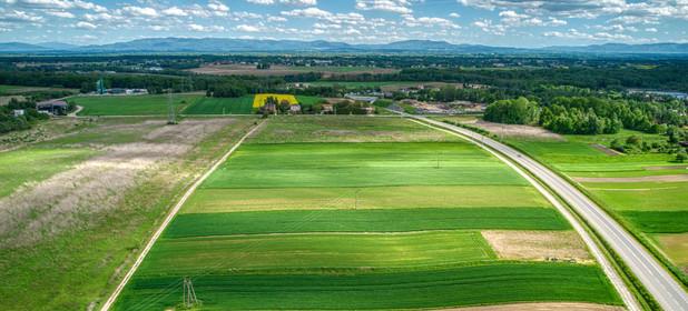 Działka na sprzedaż 6091 m² Jastrzębie-Zdrój Dębina - zdjęcie 3