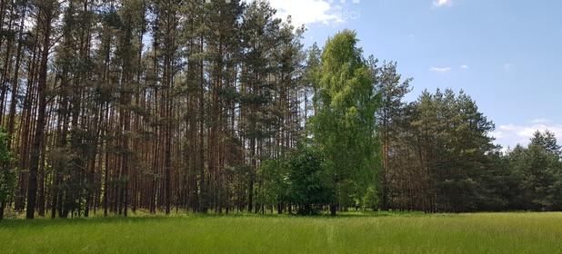 Działka na sprzedaż 24700 m² Namysłowski Pokój Domaradz Kozuby - zdjęcie 3