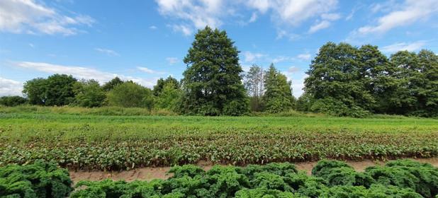 Działka na sprzedaż 8016 m² Wejherowski Rumia - zdjęcie 3