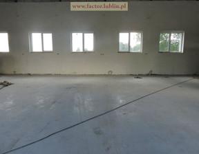 Magazyn, hala do wynajęcia, Jastków, 450 m²