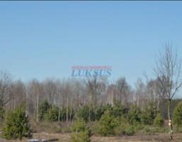 Morizon WP ogłoszenia | Działka na sprzedaż, Piaseczno, 2648 m² | 2239