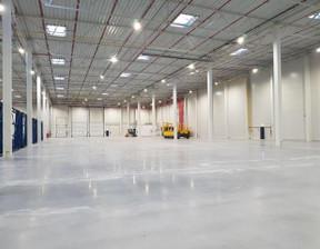 Obiekt do wynajęcia, Lędziny Zawiszy Czarnego, 15000 m²