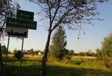 Działka na sprzedaż, Prusy, 3000 m²