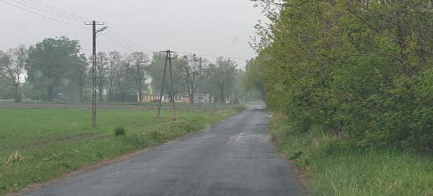 Działka na sprzedaż 3000 m² Warszawski Zachodni (pow.) Leszno (gm.) Gawartowa Wola - zdjęcie 1
