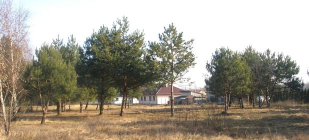 Działka na sprzedaż 8115 m² Otwocki (pow.) Wiązowna (gm.) - zdjęcie 1