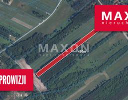 Morizon WP ogłoszenia | Działka na sprzedaż, Dobrzyniec, 9200 m² | 6595