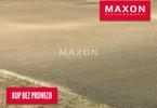 Morizon WP ogłoszenia | Działka na sprzedaż, Opacz-Kolonia Al. Krakowska, 10713 m² | 6840