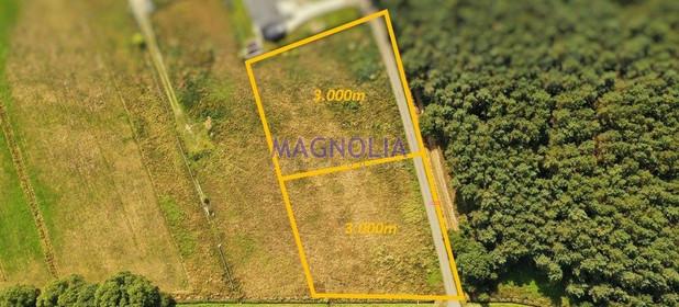 Działka na sprzedaż 3000 m² Policki Dobra (szczecińska) Wołczkowo Leśna - zdjęcie 2