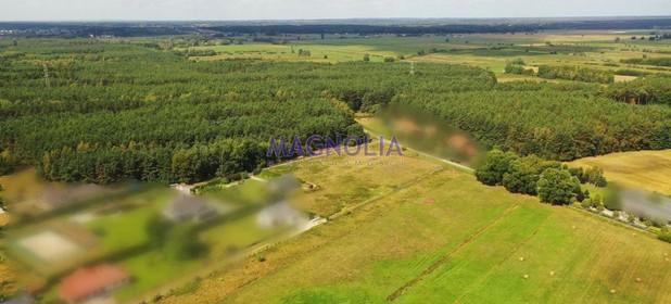 Działka na sprzedaż 3000 m² Policki Dobra (szczecińska) Wołczkowo Leśna - zdjęcie 3