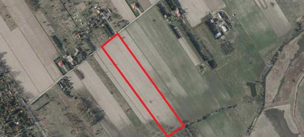 Działka na sprzedaż 29400 m² Piaseczyński (pow.) Piaseczno (gm.) Złotokłos - zdjęcie 3