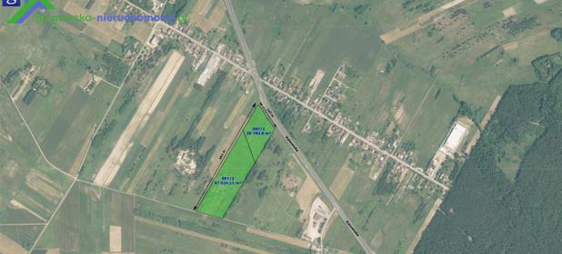 Działka na sprzedaż 68518 m² Myszkowski Koziegłowy Rzeniszów - zdjęcie 1