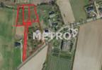 Działka na sprzedaż, Sicienko, 1307 m²   Morizon.pl   2484 nr2