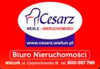 Budowlany-wielorodzinny na sprzedaż, Wieluń, 12000 m² | Morizon.pl | 2819 nr2