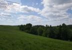 Działka na sprzedaż, Lutcza, 46000 m²   Morizon.pl   4722 nr6