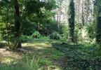 Działka na sprzedaż, Przyrownica, 41645 m² | Morizon.pl | 3270 nr3