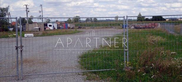 Działka na sprzedaż 18000 m² Piotrkowski Wola Krzysztoporska Mzurki - zdjęcie 3