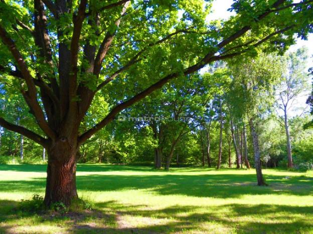 Morizon WP ogłoszenia   Działka na sprzedaż, Konstancin-Jeziorna, 2200 m²   5238