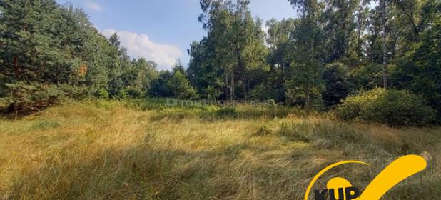 Działka na sprzedaż 6900 m² Siedlecki Kotuń Tymianka - zdjęcie 1