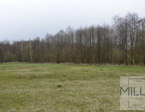 Działka na sprzedaż, Tadzin, 7800 m²