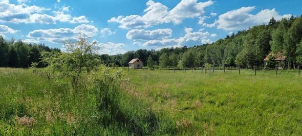 Działka na sprzedaż 1000 m² Trzebnicki Oborniki Śląskie Osolin Działki budowlane przy granicy Osolina. Obok las - zdjęcie 2