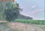 Działka na sprzedaż, Krzeczyn, 1500 m²   Morizon.pl   6424 nr2