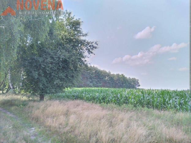Działka na sprzedaż, Krzeczyn, 1500 m²   Morizon.pl   6424
