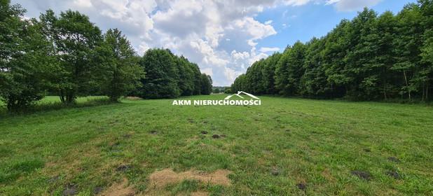Działka na sprzedaż 7000 m² Grudziądzki (Pow.) Grudziądz (Gm.) Wielki Wełcz - zdjęcie 3