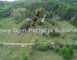 Morizon WP ogłoszenia   Działka na sprzedaż, Janów, 6100 m²   9669