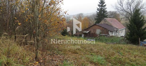 Działka na sprzedaż 3200 m² Wałbrzyski Stare Bogaczowice Nowe Bogaczowice - zdjęcie 3