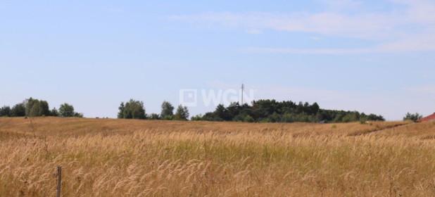 Działka na sprzedaż 20500 m² Policki Dobra Wąwelnica - zdjęcie 3