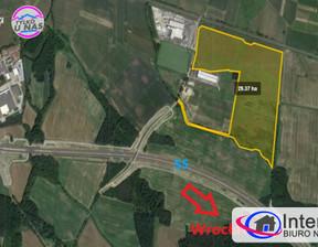Działka na sprzedaż, Wszemirów, 293700 m²
