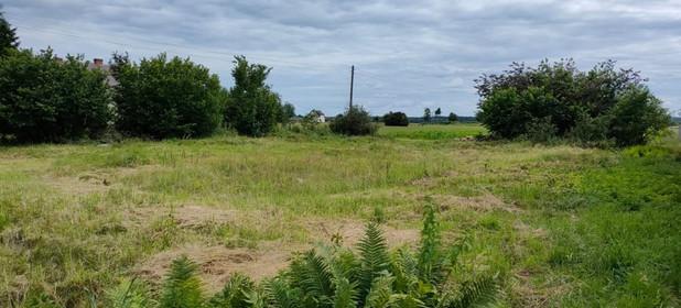 Działka na sprzedaż 7500 m² Opolski Popielów - zdjęcie 1